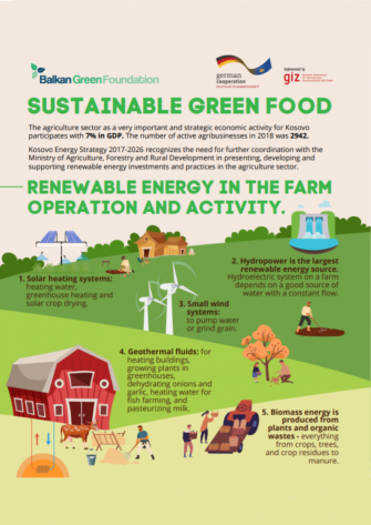 SUSTAINABLE GREEN FOOD